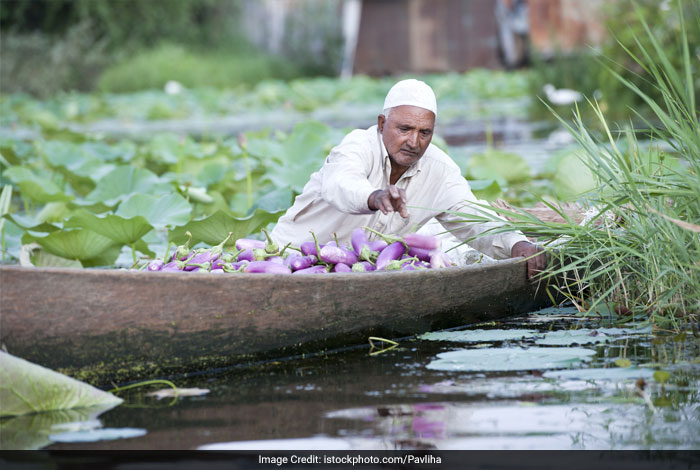 Excessive usage of the Dal lake by locals has hampered it significantly