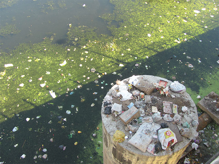 Pollutants and waste often washes up to the banks of the lake