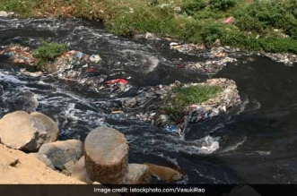 Ensure Cleanliness Of Drains At Maharani Bagh National Green Tribunal Directs Delhi Authorities