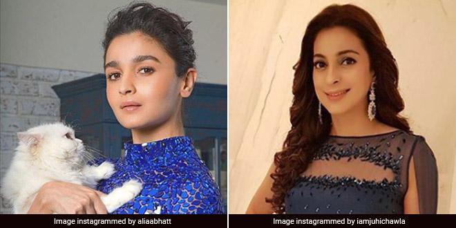 Be 'Environment's Secret Santa' And Ditch Plastic Wrapping This Christmas Actors Alia Bhatt, Juhi Chawla