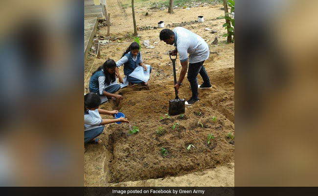 Planting of trees is a major Green Army initiative