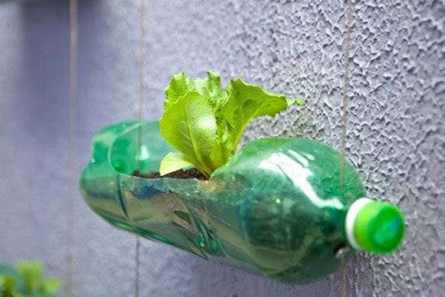 Goodbye Plastic, Hello Creativity: Five Easy Ways To Reuse Plastic Bottles