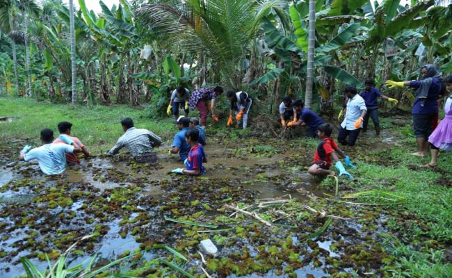163 Ponds Revived In 60 Days: Here Is How People Of Ernakulam District, Kerala, Are Giving A Second Lease Of Life To Ponds