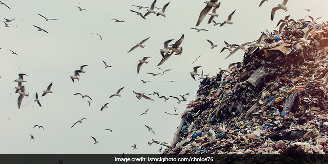 National Green Tribunal Convenes Meeting To Identify Landfill Sites