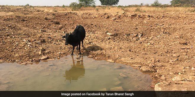 water-conservation-rajasthan-tarun-bhagat-sangh