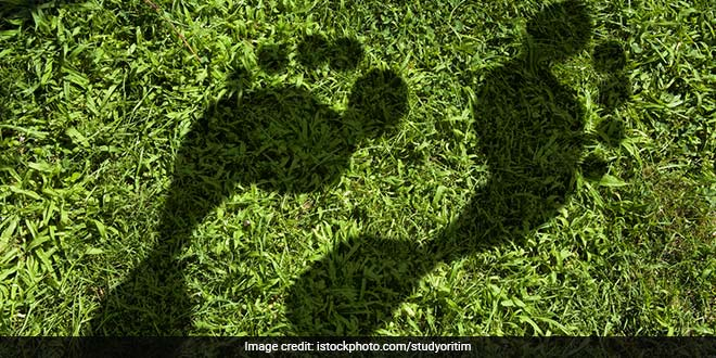 Five Conventional Ways To Reduce Your Carbon Footprint