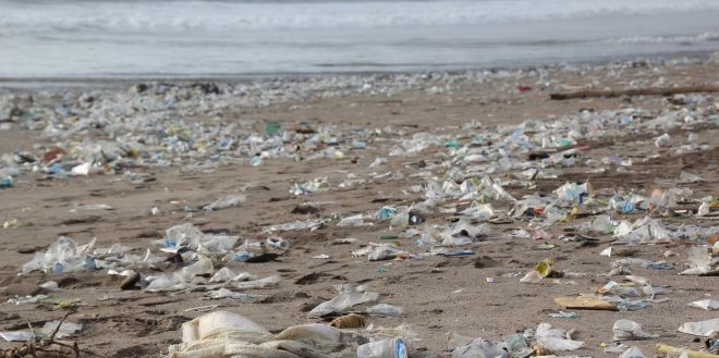 Ahead Of World Environment Day, Government Declares All Protected Areas 'Plastic Free Zones'