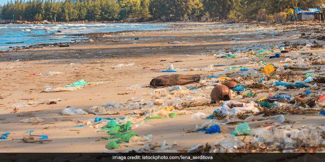 plastic-waste-beach-world-environment-day-31