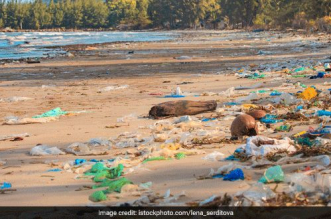 plastic-waste-beach-world-environment-day-33