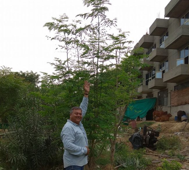 Van Mahotsav Special: A Story Of Peepal Baba, The Man Who Has Planted Over 20 Million Trees