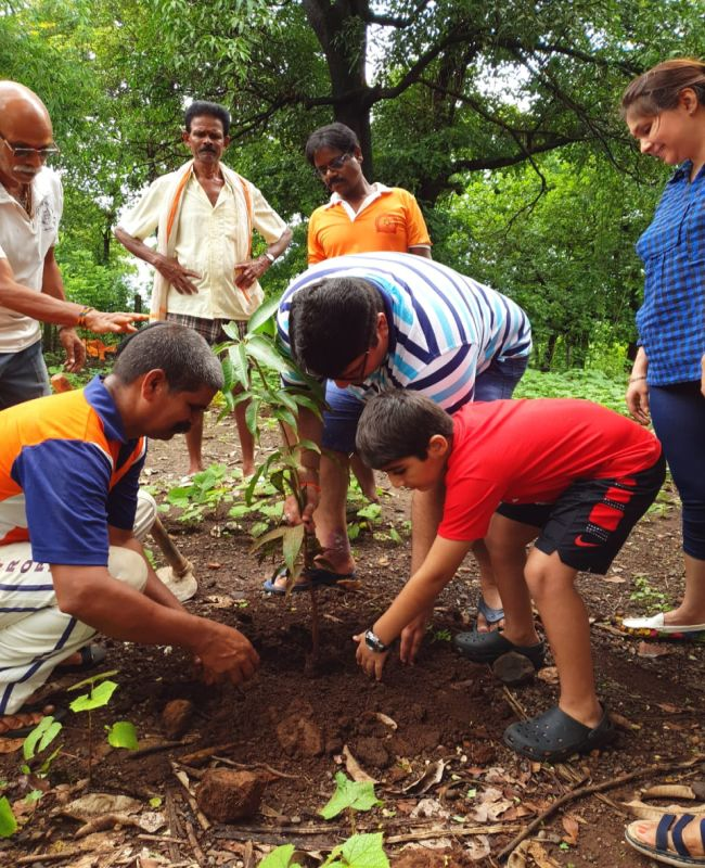 Saplings only of Cashew, Mango and Guava were planted as these plants are native and suitable in the Konkan region
