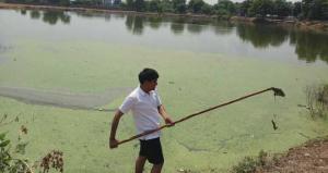 Water Conservation: 25-Year-Old Engineer Ramveer Tanwar's Efforts Revive Many Lakes In Uttar Pradesh