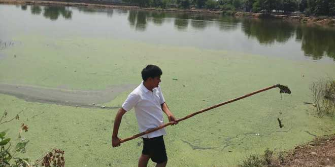 Ramveer Tanwar has rejuvenated 10 waterbodies since 2015