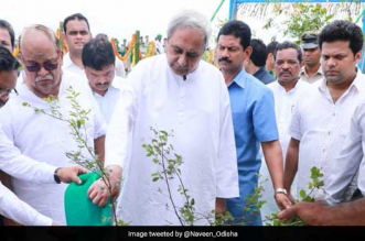 Odisha to spend Rs 5,000 crore to plant two crore saplings on the banks of Mahanadi