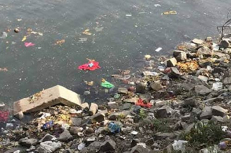 The NGT said that no progress was made in cleaning the Yamuna