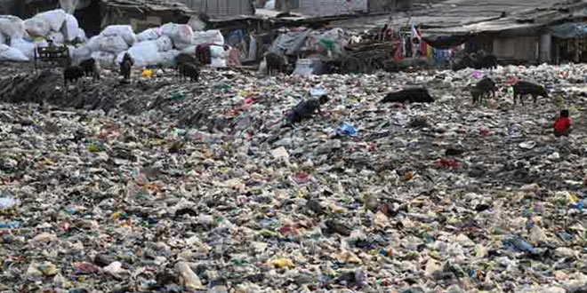 The Bombay High Court criticised Maharashtra government and BMC over garbage on Marine Drive