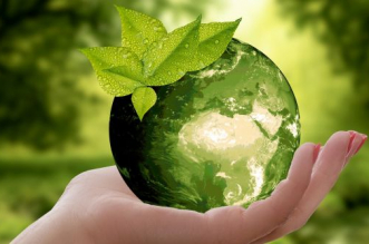 Freedom From Pollution: Top 5 Ways How Offices In India Can Reduce Their Carbon Footprint