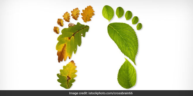 Free India From Air Pollution Five Ways To Reduce Carbon Footprint