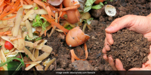 In This Pune Colony Civic Body Stops Kitchen Waste Collection To Get Residents To Start Composting