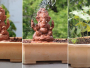 The Ganapati idols are stuffed with seeds and on dissolving they turn into plants
