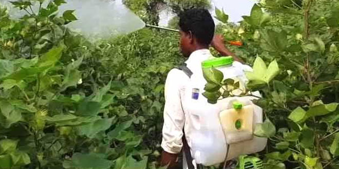 NGT Directs Panel To Look Into Effluents Discharge By Insecticides India In Alwar
