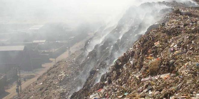 Committee On Waste Management In Delhi Should Have Specific Time Line: SC