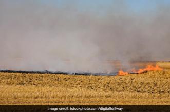 Punjab Hopes To Tackle Stubble Burning Problem Through Farm Mechanisation