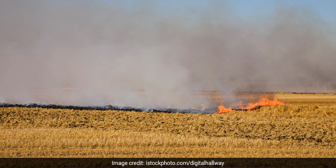 Punjab Hopes To Tackle Stubble Burning Problem Through Farm Mechanisation