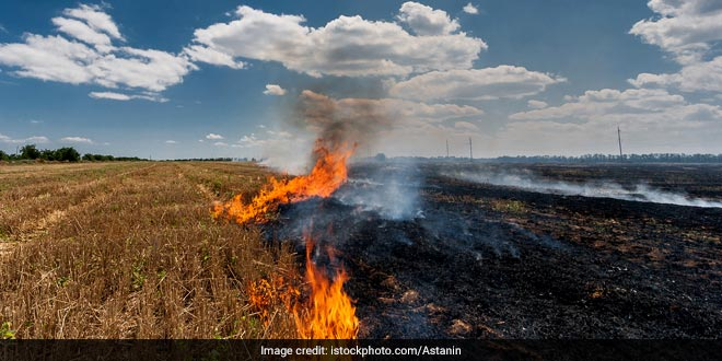 Union Environment Ministry Asks States To Ensure Distribution Of Farm Implements To Tackle Stubble Burning