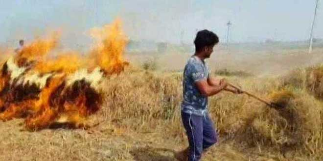 Air Pollution: Punjab Government Tasks 10 Administrative Secretaries With Checking Stubble Burning