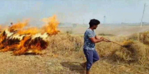 Stubble Burning: Comply Or Face The Court Of Law, Warns Delhi Environment Minister Imran Hussain