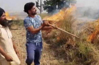 No Manpower Or Machinery, Will Burn Crop Residue, Say Punjab Farmers