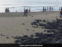 Puducherry Lieutenant Governor Kiran Bedi issued a set of new guidelines to maintain cleanliness beaches