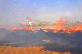Stubble Burning: With Little Time Left For Wheat Sowing, Stubble Fires Spike In Punjab