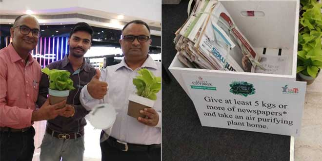 Celebrate 'Green Wali Diwali', Donate Paper Waste And Take Home An Air Purifying Plant
