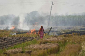 haryana-stubble-burning-air-pollution