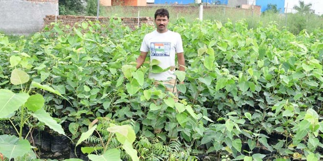 Tree Man Of Haryana: This Constable Is On A Mission To Make Sonipat Green