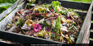 Waste Management: Meerut Jail To Convert Waste Into Manure