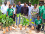 A Group Of Citizens In Bengaluru Are Saving Trees From Human Invasion