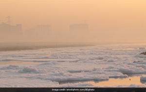 In Pictures: Yamuna River Shows Signs Of Extreme Pollution With Toxic Froth