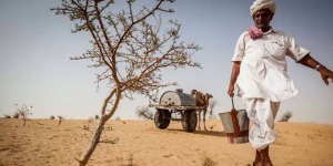 Defying The Impossible, 78-Year-Old Plants 50,000 Trees In Rajasthan's Barren Desert