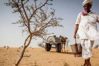 Ranaram Bishnoi single-handedly stopped the march of the desert by planting trees
