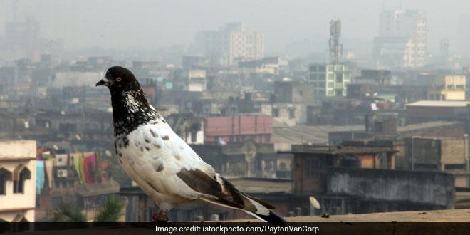 kolkata-air-pollution