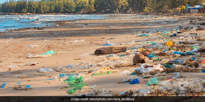Plastic Pollution: Fishing Harbours, Beaches Near Fishing Villages See 'High' Beach Litter, Says Government