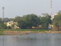 Migratory Birds Return To Kolkata's Santragachi Lake After Citizen Led Clean-Up Drive
