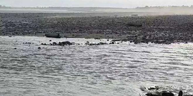 Comprehensive Study On The Environmental Flow Of Yamuna To Be Undertaken By Government, Say Officials