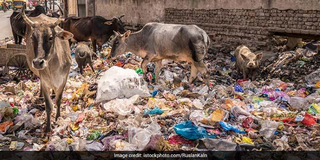 garbage-india-ticking-time-bomb