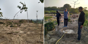 People of Uttar Pradesh's Firozabad Turn Barren Land Green Through Tree Plantation Drive And Determination