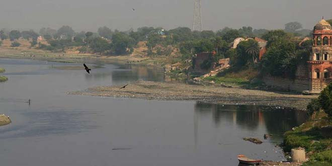 NGT Forms Expert Committee To Ascertain Impact Of Steel Pickling Units On Air Quality, Yamuna River in Delhi