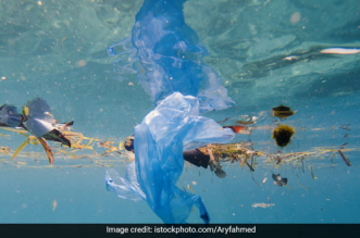 US Scientists Develop New Recycling Process To Reduce Plastic Waste From Oceans